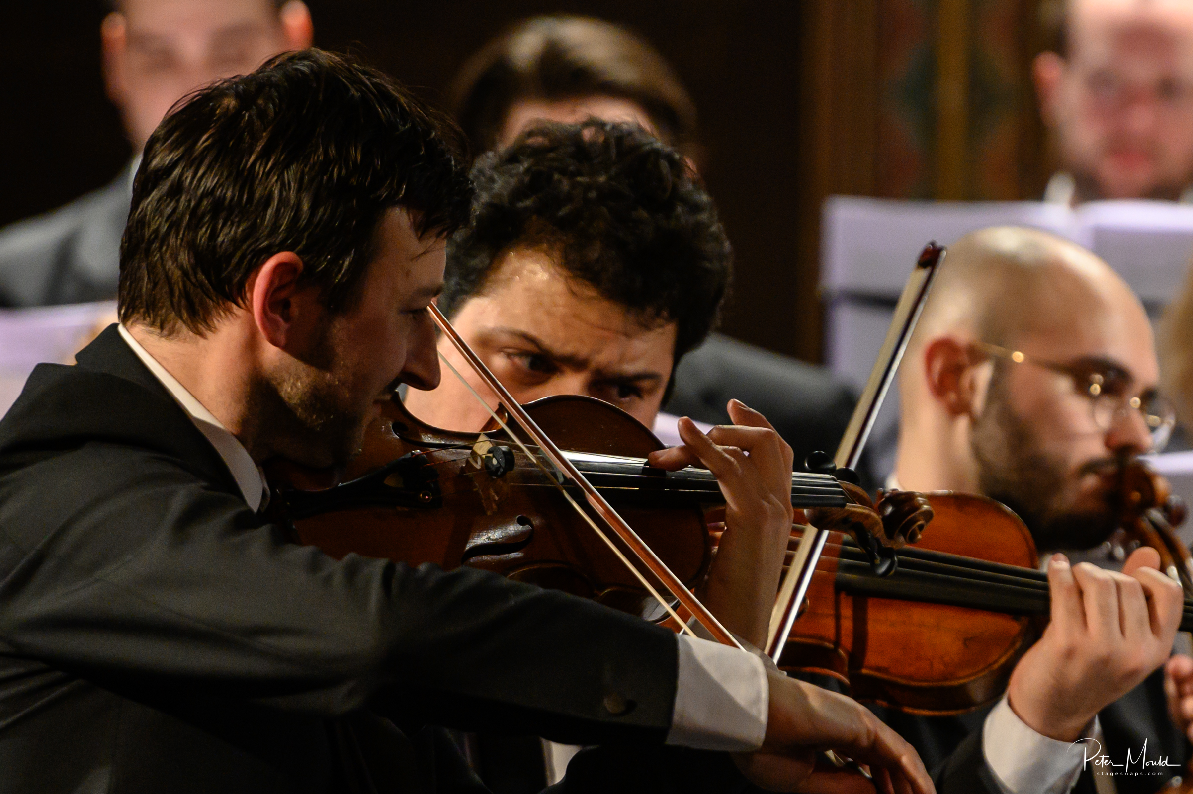 three violin players concentrating on playing, part of Hastings Philhamonic Orchestra